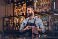 Free Cheerful Stylish Brutal Barman Is Cleaning The Glass With A Cloth At Bar Counter Background. Stock Photos - 117074563