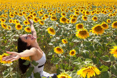 Cheerful in a sunflower field Royalty Free Stock Photos