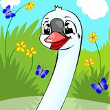 Cheerful swan. Stock Images