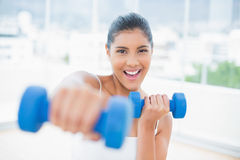 Cheerful toned brunette boxing dumbbells towards camera Royalty Free Stock Images