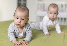 Cheerful twins on the bed. 6 months old stock images