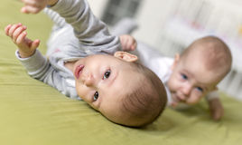 Cheerful twins on the bed. 6 months old royalty free stock photo