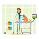 Cheerful veterinary doctor examining dog in vet clinic. Colorful cartoon character Illustration Stock Images