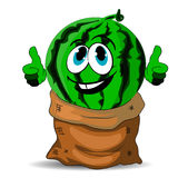 Cheerful watermelon sits in a bag, cartoon on a white background. Royalty Free Stock Photography
