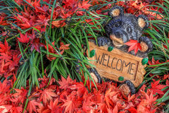 Cheerful Welcome Bear - Surrounded by Colorful Autumn Leaves Royalty Free Stock Image