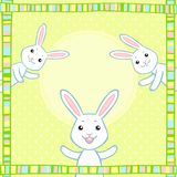 Cheerful white rabbits Royalty Free Stock Images