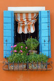 The cheerful window Royalty Free Stock Image