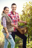 Cheerful  winegrower couple Stock Photos