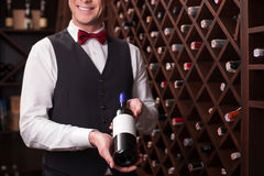 Cheerful winehouse worker is presenting elegant Stock Images