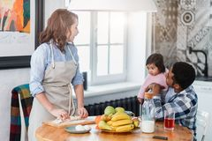Cheerful woman cooking dinner for her family royalty free stock photography