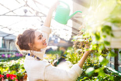 Cheerful woman gardener pouring flowers with watering can Stock Photography