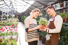 Cheerful woman with help of gardener choosing flowers in pot Stock Images