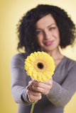 Cheerful woman holding a yellow flower. stock photography