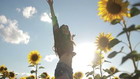 Cheerful woman walking in field of sunflowers stock footage