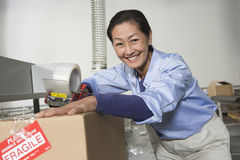 Cheerful Woman Working In Warehouse Royalty Free Stock Photos