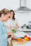 Cheerful women cooking together Stock Image