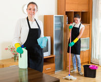 Cheerful women doing housework Royalty Free Stock Photos