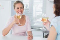Cheerful women having glass of wine Stock Photos