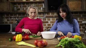 Cheerful women preparing healthy salad in kitchen stock footage