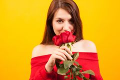 Cheerful young beautiful woman holding a red rose and looking a the camera over yellow background. Attractive woman. Romantic woman royalty free stock photo