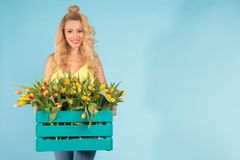 Cheerful young blonde woman florist with box of tulips over blue background with copy space royalty free stock images