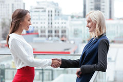 Cheerful young businesswomen are congratulating Royalty Free Stock Photos