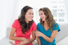 Cheerful young female friends sitting on sofa at home. Two cheerful young female friends sitting on sofa in the living room at home stock image