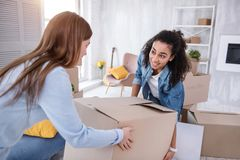 Cheerful young girls carrying heavy box together. Mutual help. Upbeat young girls helping each other and carrying a heavy box together while packing before Royalty Free Stock Photography