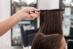 Cheerful young hairdresser is combing her client Royalty Free Stock Photos