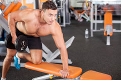 Cheerful young male sportsman is training in. Attractive athlete is raising the dumbbell in gym. He is leaning on the bench and kneeing. The man is looking Stock Images