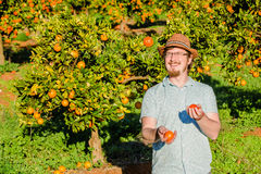 Cheerful young man juggling oranges on citrus farm Stock Images