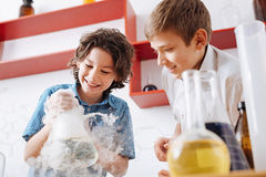 Cheerful young scientists working in the lab Royalty Free Stock Photo