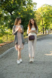 Cheerful young two women walking outdoors in park drinking coffee Stock Photo