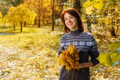 Cheerful young woman in autumn Park smiling on a Sunny day royalty free stock photos