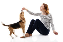 Cheerful young woman giving food to puppy Stock Photos