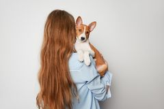 Cheerful young woman hugging and kissing her puppy basenji dog. Love between dog and owner. Isolated on white background.  royalty free stock image