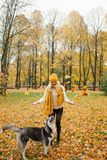 Cheerful young woman with yellow hat and dog husky walking. And having fun outdoor in the autumn park Stock Photography
