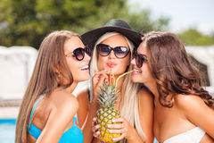 Cheerful young women are enjoying drink on Stock Image