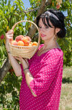 Cheerfull brunette picking fruits Royalty Free Stock Images