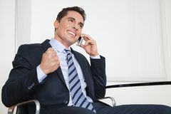 Cheering businessman Royalty Free Stock Photos