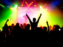 Cheering crowd. At a rock concert Royalty Free Stock Photo
