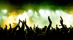 Cheering crowd. At a rock concert Stock Image