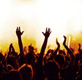 Cheering crowd. At a rock concert Royalty Free Stock Image