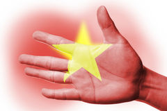 Cheering fan with Painting national Vietnam flag Royalty Free Stock Photography