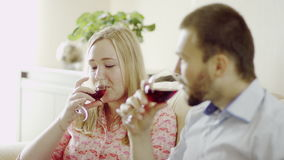 Cheering with red wine. Romantic couple cheering with red wine sitting and talking indoors stock footage