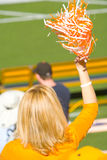 Cheering Tennesse Fan. Shot of a blond Tennessee fan cheering stock images