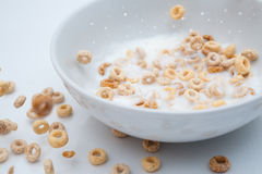 Cheerios Regen mit Milchspritzen Stockbild