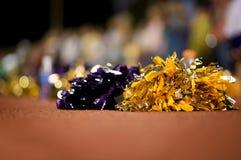 Cheerleader Poms