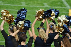 Cheerleader waving poppoms Stock Photography