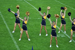 Cheerleader waving pompoms Stock Images